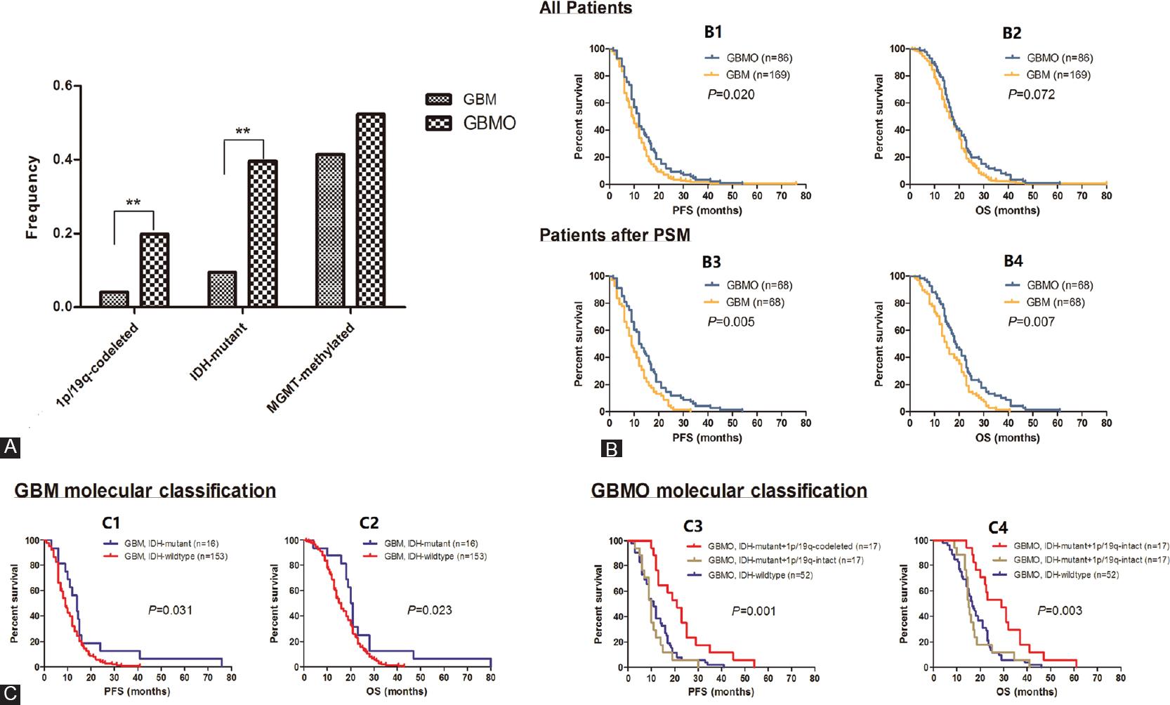 (PDF) Vascular Mimicry: The Next Big Glioblastoma Target